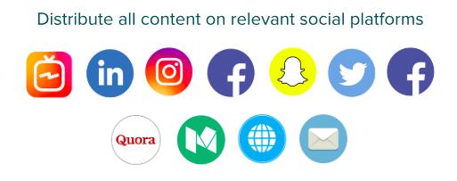 Gary Vaynerchuk content model
